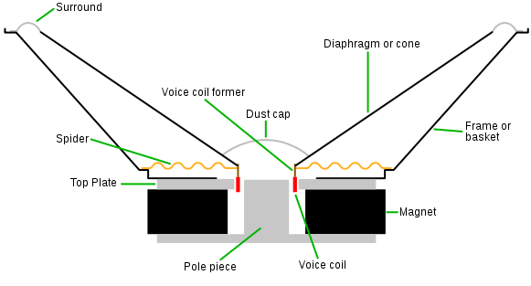 Sectional diagram of speaker